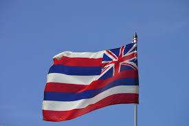 King Kamehameha Flag I Love My State Flag Vexillology