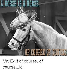 Mr Ed Meme - a horse is a hors horse of course mr ed of course of courselol