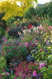 flowers in garden images 6198 best flowers trees courtyards u0026 gardens images on pinterest