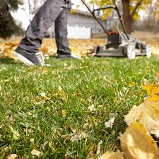 lawn care how to repair a lawn family handyman