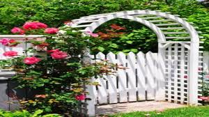 images about fence ideas farm gate lattice pictures garden designs