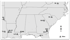 Southeastern United States Map by Forests Free Full Text Understanding The Fate Of Applied