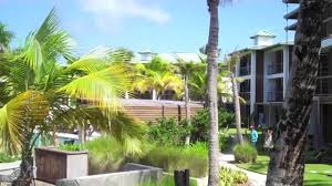 w hotel vieques island puerto rico youtube