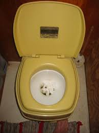 Outhouse Pedestal Toilet The World U0027s Nicest Outhouse 8 Steps