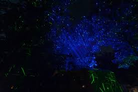 Firefly Laser Outdoor Lights by Bliss Lights Outdoor Firefly Lights 48831 Astonbkk Com