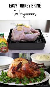 easy turkey brine recipe i nap time