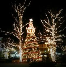 zona rosa tree lighting 33 best photos images on pinterest photographs photos and pictures