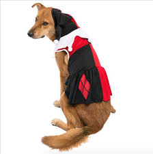 11 adorable matching halloween costumes for kids and pets today com