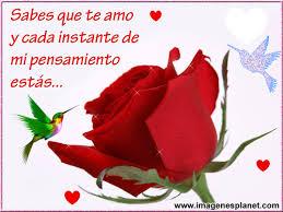 imagenes de amor con rosas animadas rosas bonitas animadas con movimiento con frases de amor imágenes