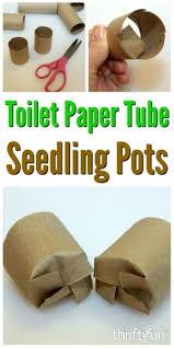 8771 best vegetable gardening ideas images on pinterest