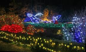 Oregon Garden Christmas Lights Cape Arago Lighthouse Oregon At Lighthousefriends Com