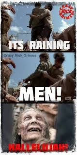 Best Walking Dead Memes - the walking lulz the internet s best memes and gifs from the