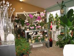 wedding flowers surrey events gallery cloverdale south surrey white rock