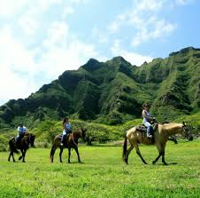 best oahu tours u0026 activities eco tours