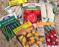 cheap seed packets buying vegetable seeds fairfax gardening