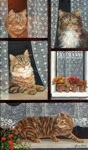 s e katzen spr che die besten 25 katzen tapeten ideen auf iphone