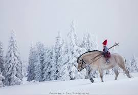 the christmas wish anjas arctic fairytale the christmas wish a classic christmas