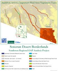 Arizona Spring Training Map by Sonoran Desert Borderlands Iba Arizona Important Bird Areas Program