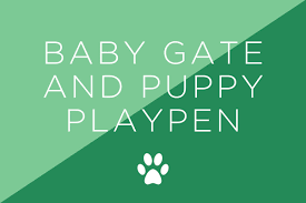 new puppy checklist what to buy for a new reader s digest