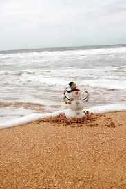 12 best beach christmas cards images on pinterest beach