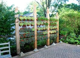 Inexpensive Backyard Privacy Ideas Backyard Privacy Ideas 11 Ways To Add Yours Bob Vila