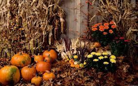 halloween scene wallpaper halloween facebook covers 560783 walldevil
