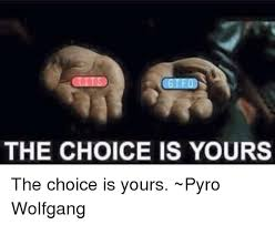 Pyro Meme - the choice is yours the choice is yours pyro wolfgang meme on sizzle