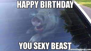 You Sexy Beast Meme - happy birthday you sexy beast meme custom 27560 memeshappen