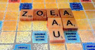get rid of your vowels u2013 a short lesson on vowel dumps in scrabble