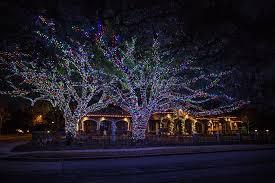 how to wrap christmas lights around a tree pin by alyssa kennedy on peace pinterest seasonal decor décor