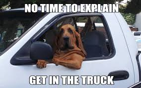 Ford Truck Memes - 6 ford truck mods for your dog ford trucks com