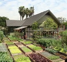 urban farming how to turn a 1 3 acre garden into a 75 000 yearly