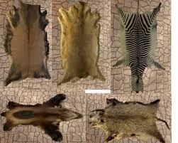 Real Fur Blankets Decor Grey Faux Fur Rug Real Bear Rug Fur Rug