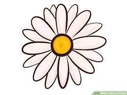 Draw A Flower Vase 9 Easy Ways To Draw A Flower Wikihow