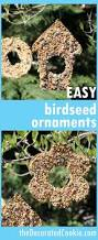 kids and adults can both make these easy birdseed ornaments garden