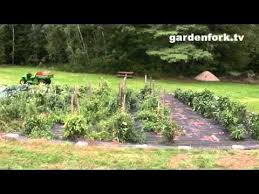 40 best vegetable garden weed free images on pinterest gardening