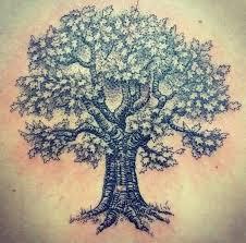 oak tree search clan oak