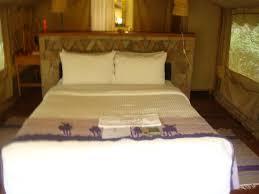 desk back of bed picture of sarova mara game camp masai mara