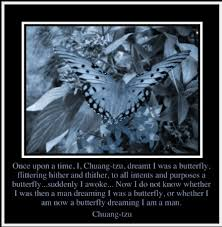 Meaningful Butterfly - once upon a i dreamt i was a butterfly butterfly quotes