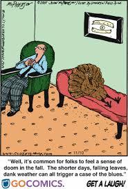 the paranoid turkey vs the evil human psychiatrist cottage