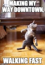 Making My Way Downtown Meme - downtown cat imgflip