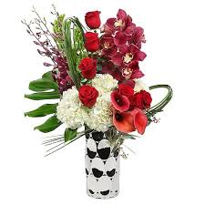 Bells Of Ireland Flower Broadway Spectacular Flower Delivery Nyc Plantshed Com