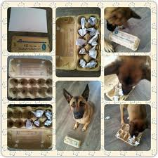 Make Your Own Dog Toy Box by 109 Best Hersenwerk Dog Toys Images On Pinterest Dog Dog