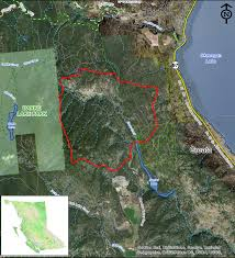 British Columbia Wildfire Service by Finlay Creek Wildfire 15 Per Cent Contained Infonews Ca