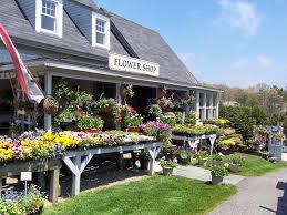 Best Shopping In Cape Cod - cape cod garden center garden supplies florist weddings