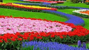 Garden Flowers Ideas Design Flower Garden Flower Garden Design Tips Before Starting