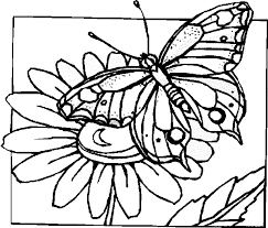 coloring print flowers butterflies coloring pages