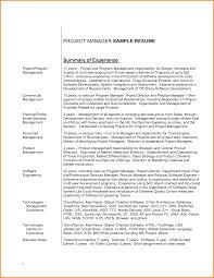 Responsibility Resume Executive Summary Resume Examples Executive Summary Resume Cover