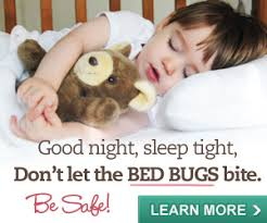 What To Use On Bed Bug Bites Bed Bug Bites How I Survived It And Other Gross Facts