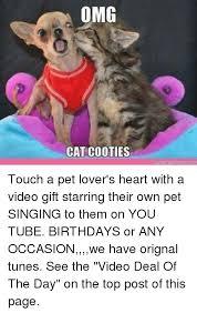Omg Cat Meme - 25 best memes about omg cat omg cat memes